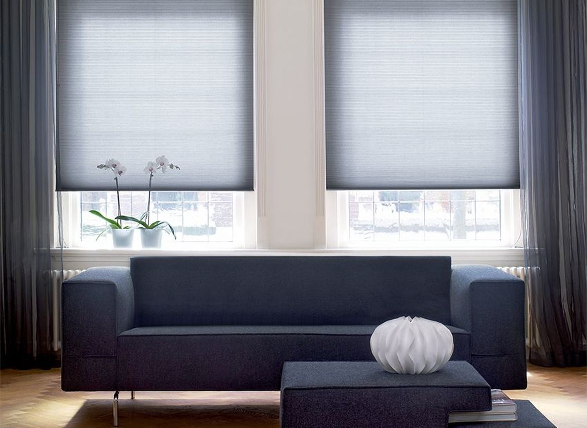 Dark Gray Plisse Pleated Blinds